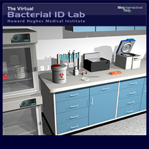 Bacterial Identification Virtual Lab