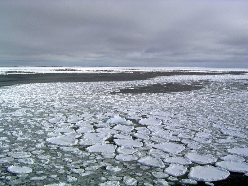 Many patches of snow-covered ice floating on the ocean.