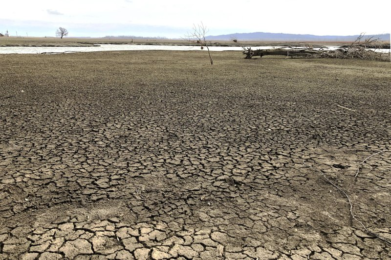 A barren landscape with cracked, dry dirt.