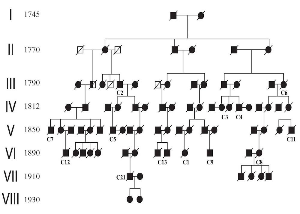 Genetic Mutation May Cause Early Onset >> Origin Of A Gene Mutation Causing Early Onset Alzheimer S Disease