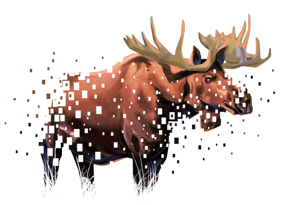 Illustration of a bull moose that is fading away in pixels.