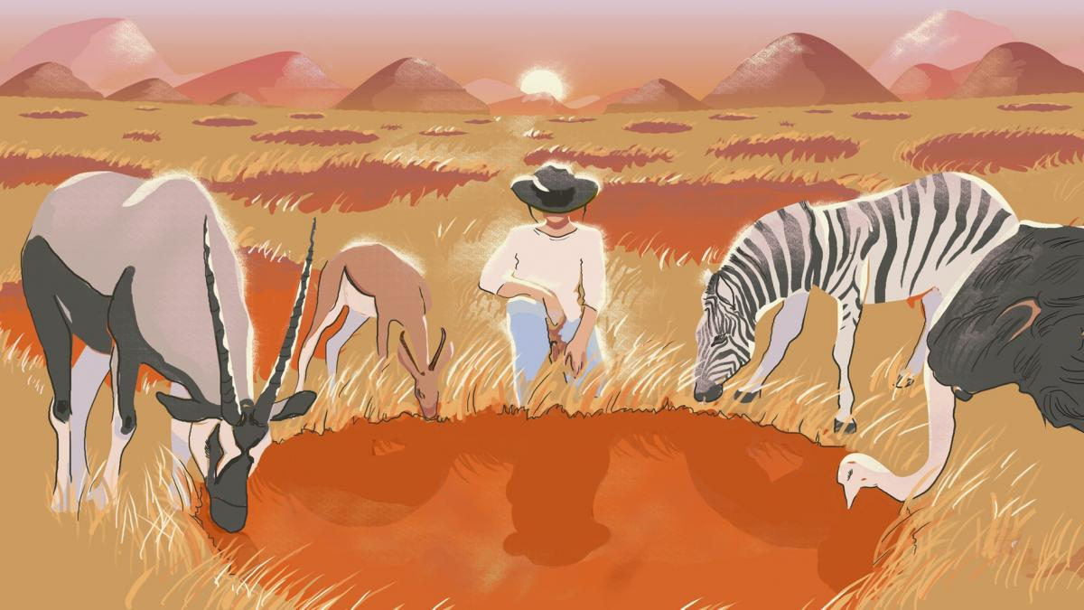 Illustration of fairy circles in Namibia with a person and three grazing animals.