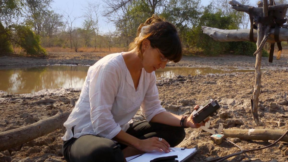 Scientist Paola Bouley looks at a camera trap