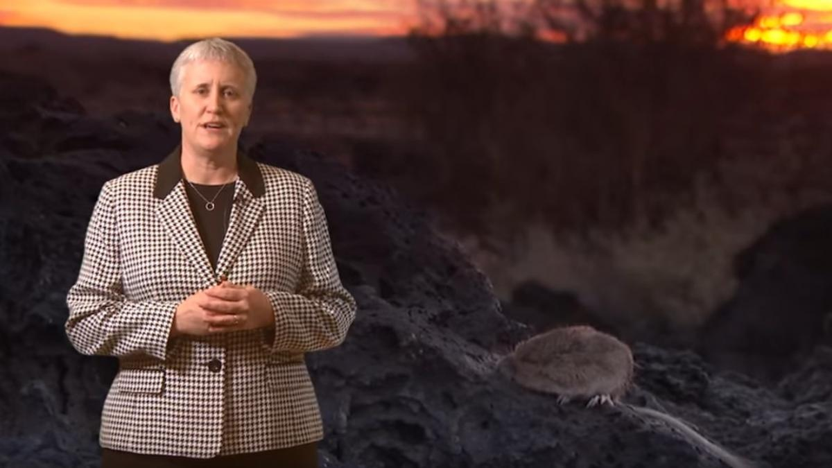 Educator in front of an image of a brown mouse on a lava flow