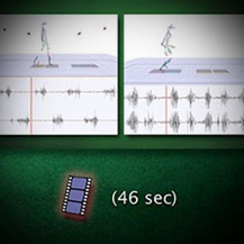 Neural Control of Walking and Running