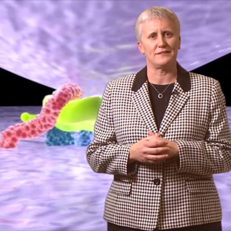 Ann Brokaw in front of the HIV life cycle animation