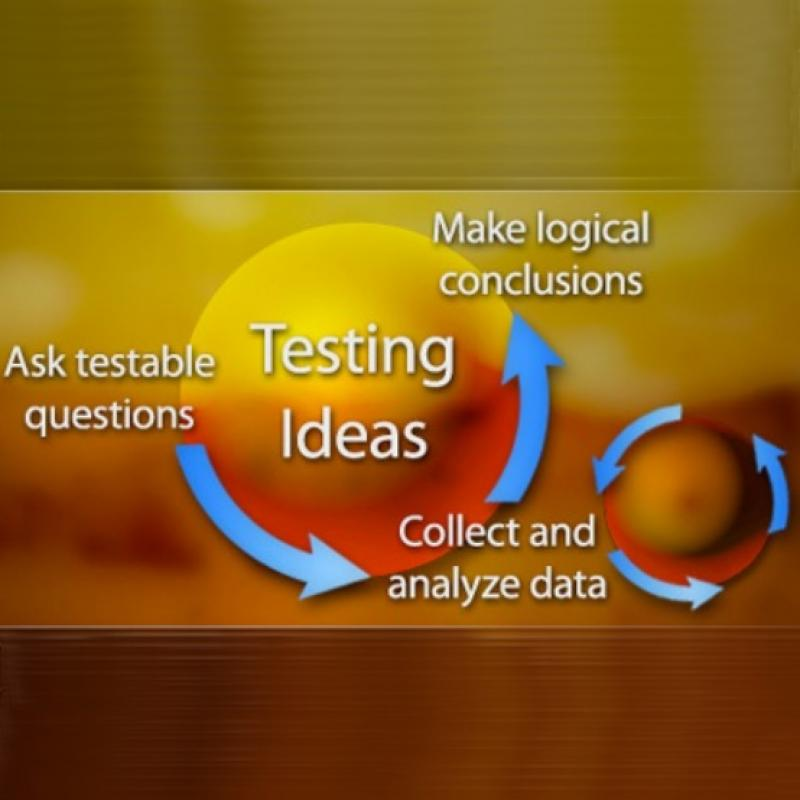 Illustrated diagram showing the cycle of testing ideas that includes asking testable questions, collecting and analyzing data, and making logical conclusions