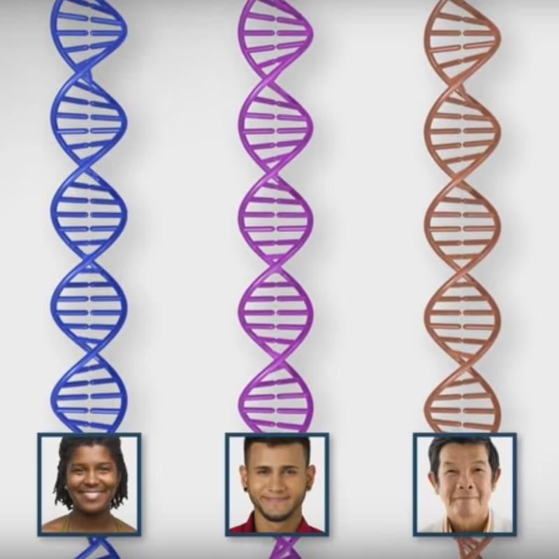three dna strands with photos of people with different skin colors on each strand