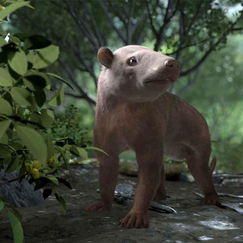 Computer generated image of an early mammal