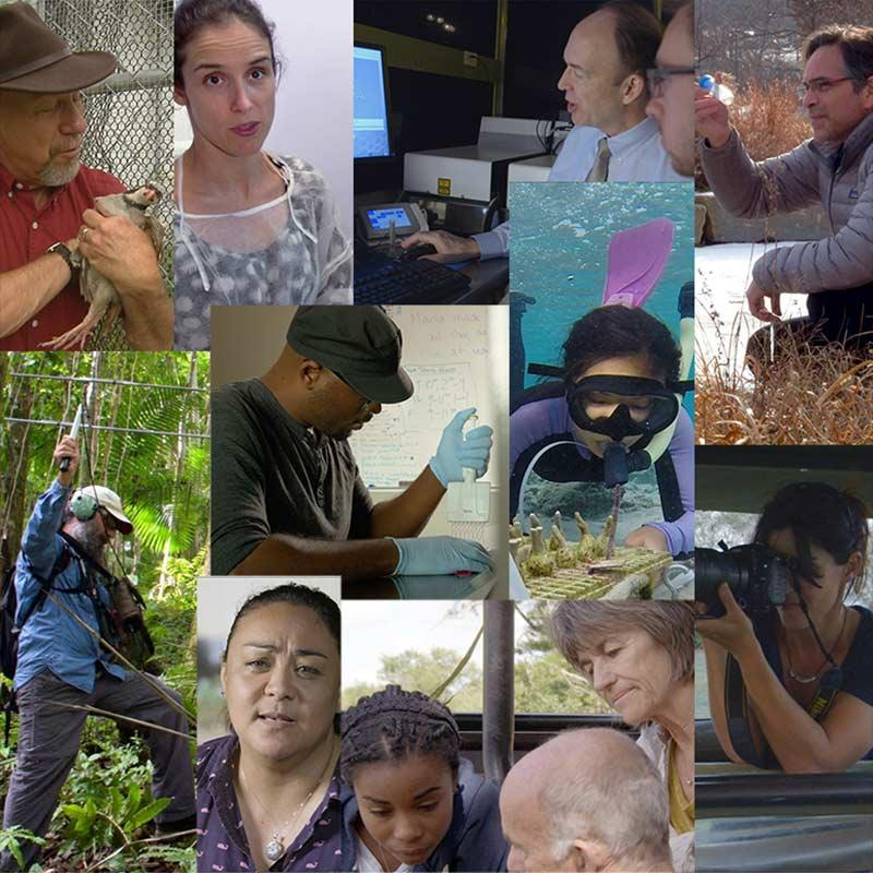 Photo montage of the scientists from the activity.
