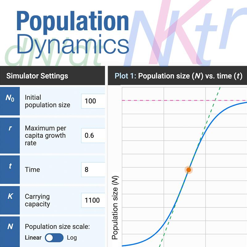 interface image of the population dynamics interactive